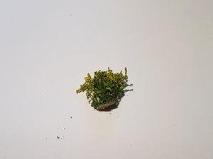Blommor Gul 2cm