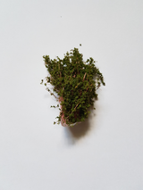 Buske 5cm Grön
