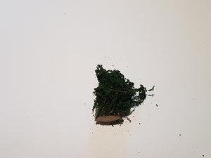 Buske 3cm Mörkgrön